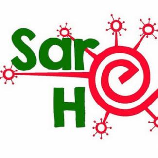 Logo del grupo Centros Sare Hezkuntza